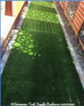 artificial grass canberra.JPG